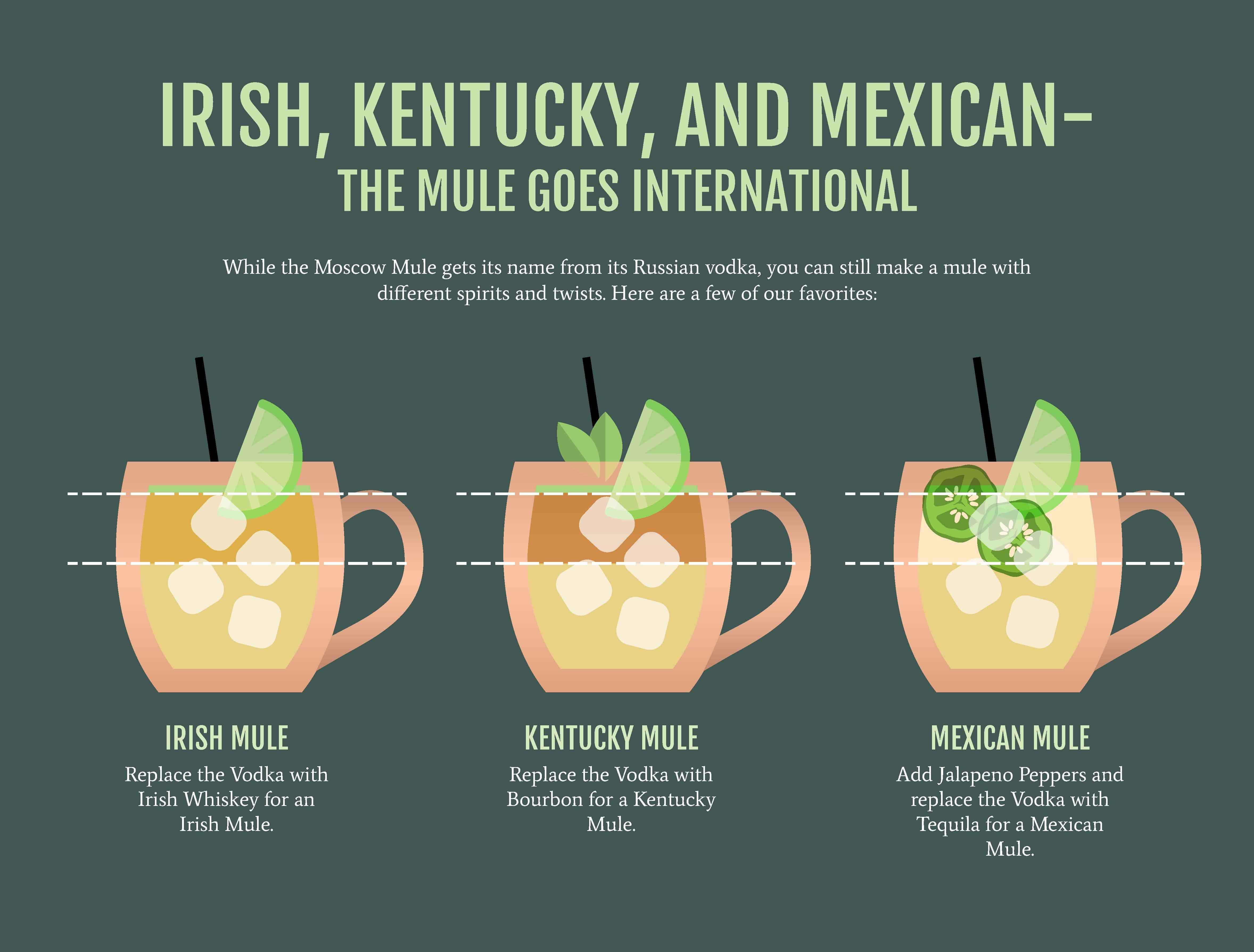 Boelter Moscow Mule Infographic